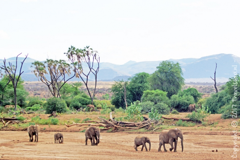 travel-soap-kenia-samburu-2017-27