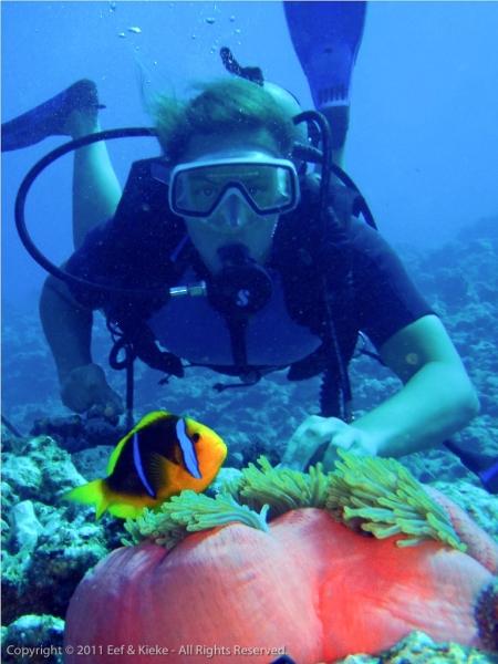 Kieke-met-Nemo