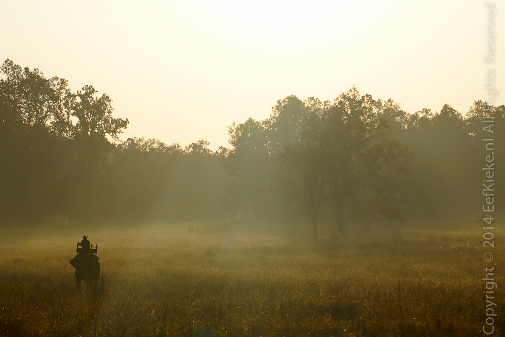 06 Mahout in the mist