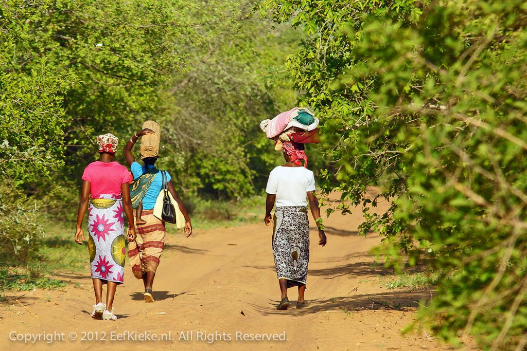 23. Limpopo ladies