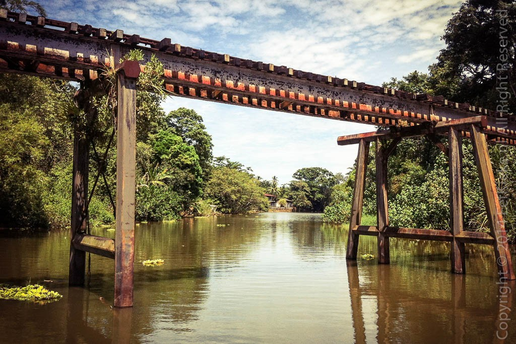 3.5 Jungle Railway