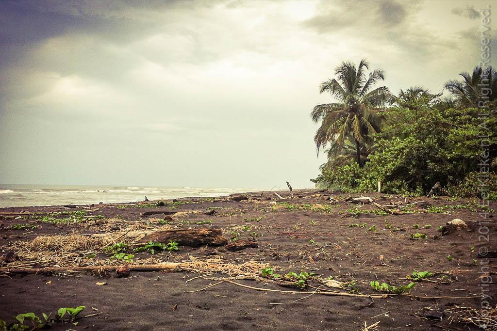6.2 Caribische kust