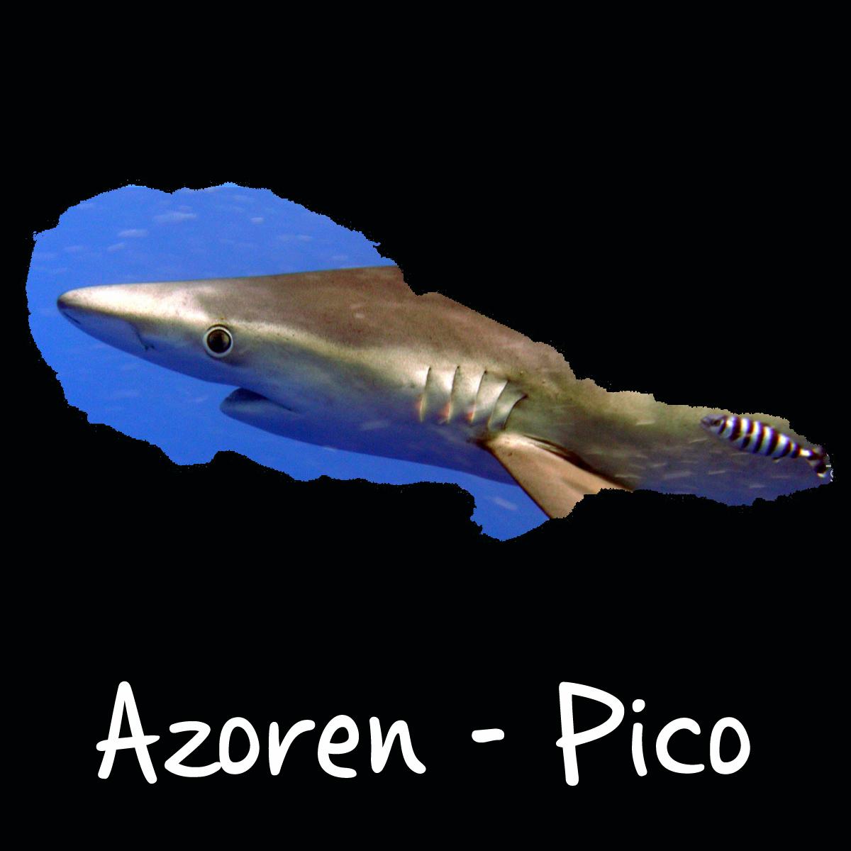 Azoren landen