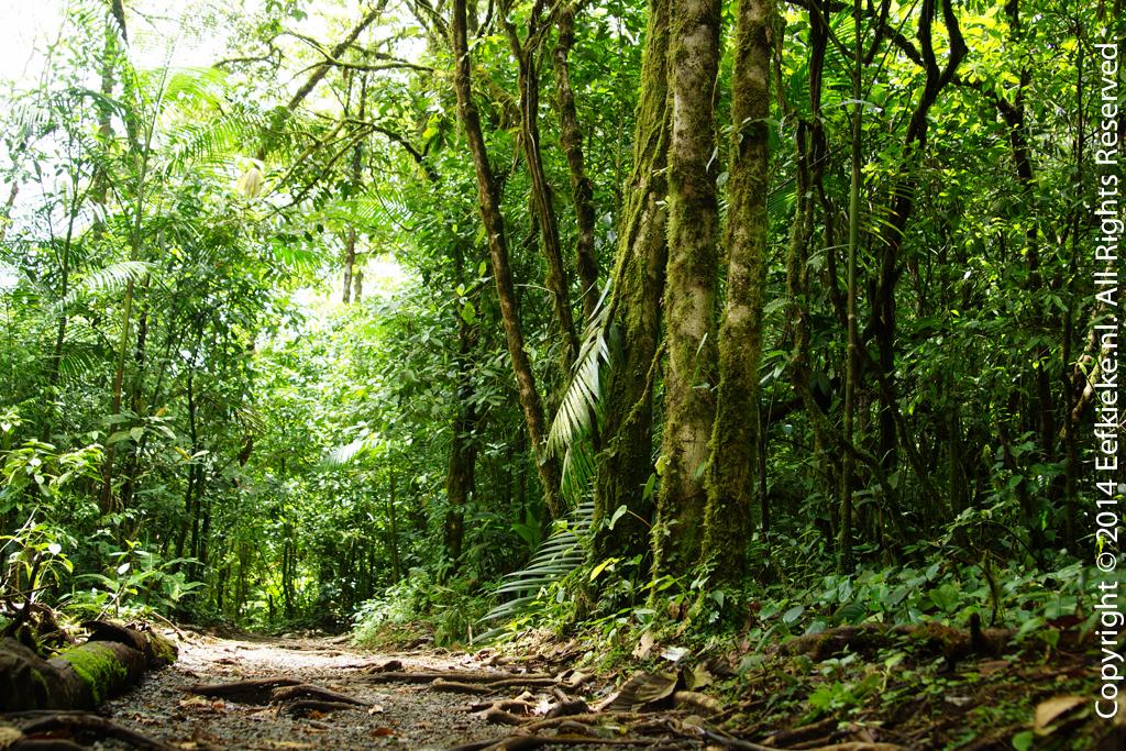 Costa Rica-7