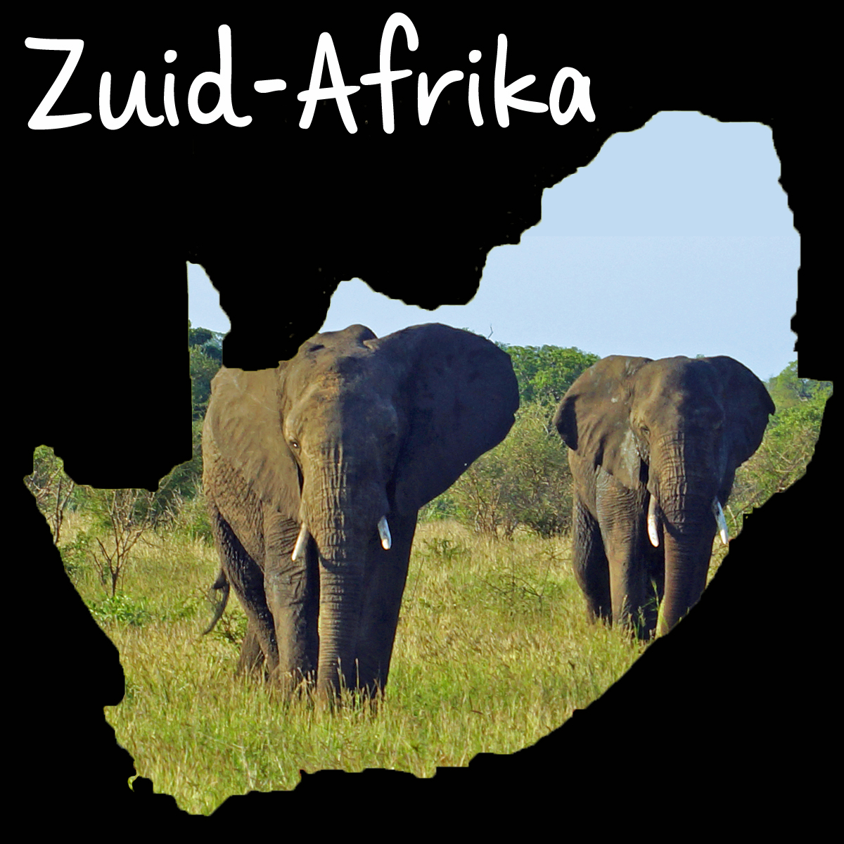 Zuid-Afrika landen
