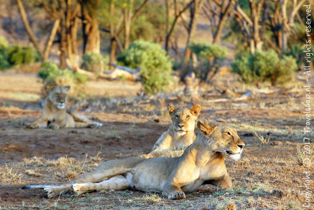 travel-soap-kenia-samburu-2017-16