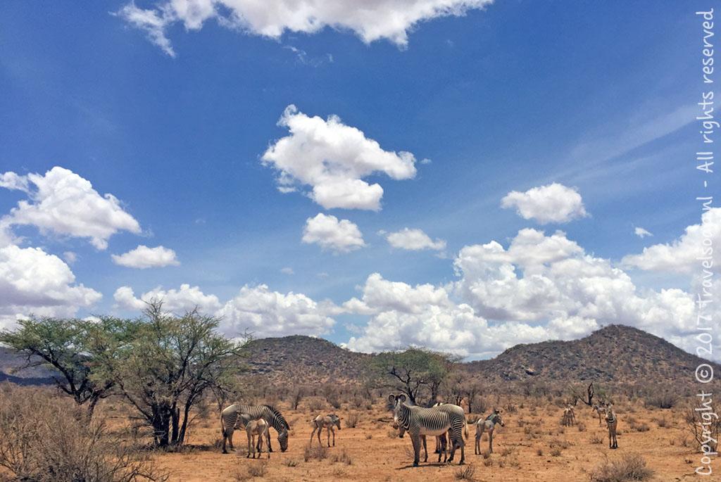 travel-soap-kenia-samburu-2017-21