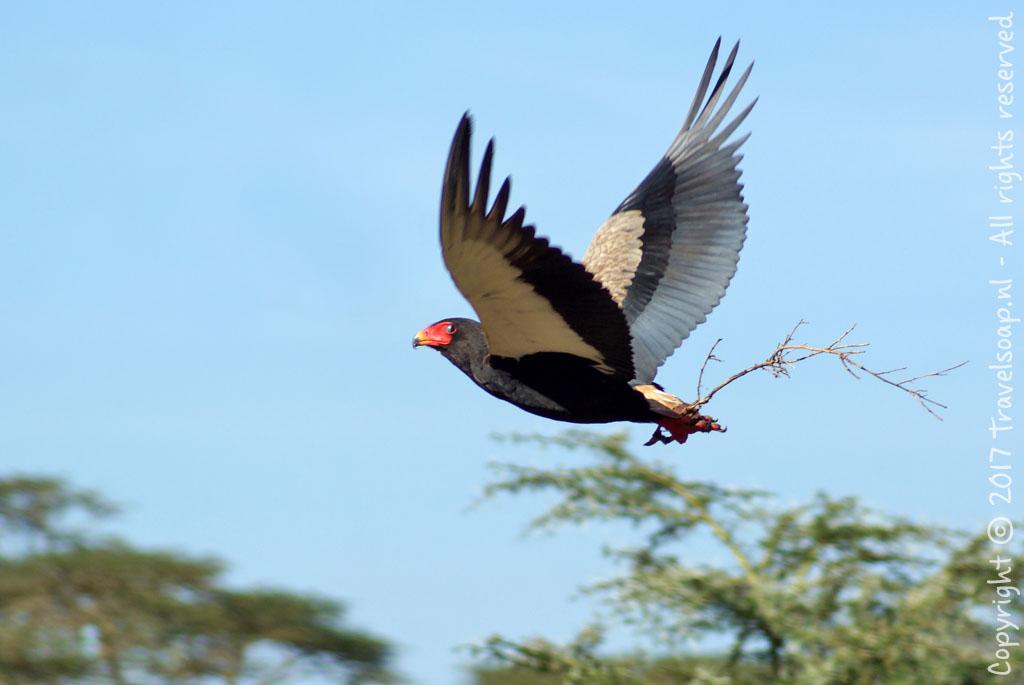 travel-soap-kenia-solio-2017-2-7