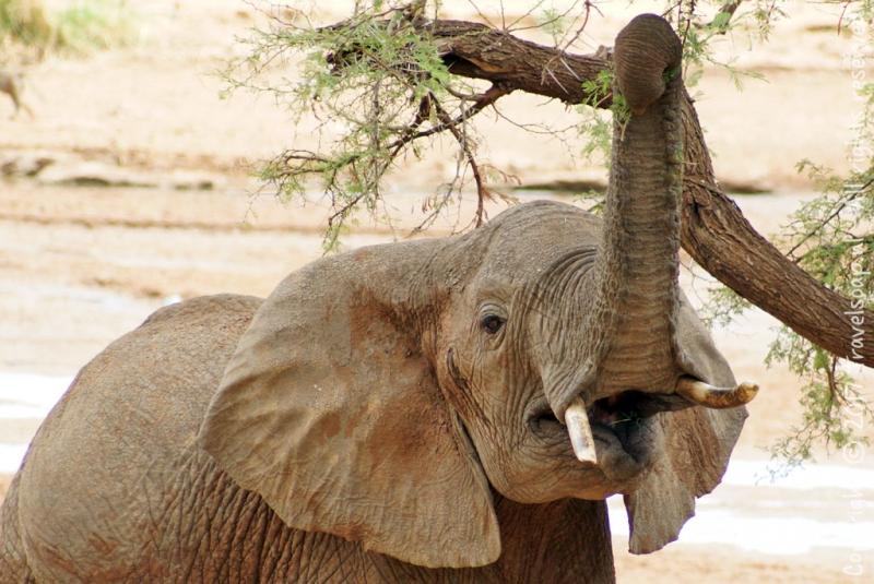travel-soap-kenia-samburu-2017-20