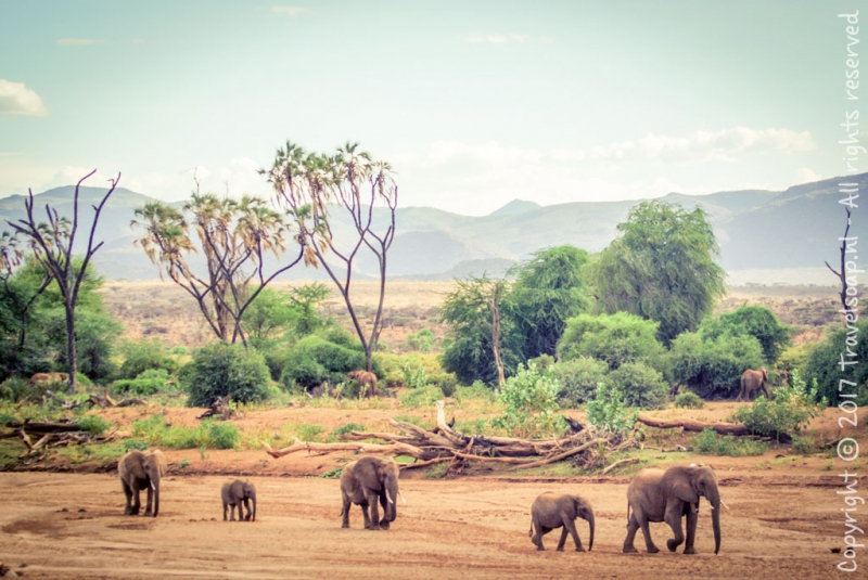 travel-soap-kenia-samburu-2017-28