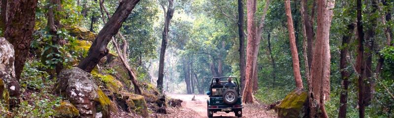 India-1-2400x720
