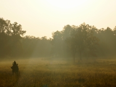 06-Mahout-in-the-mist