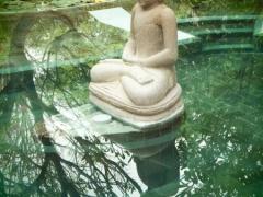 Boeddha-in-bad