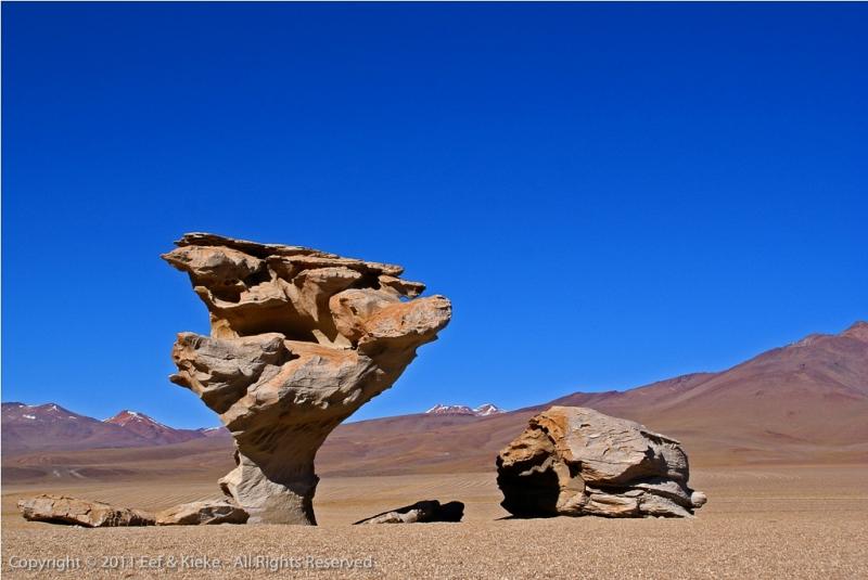 05-Rock-tree