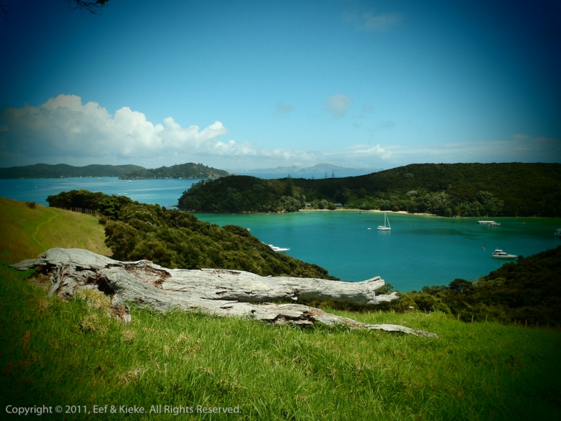 Urupukapuka-Island