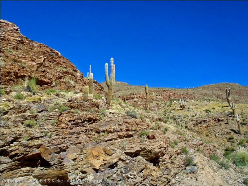 09-Weg-Salta-naar-Atacama