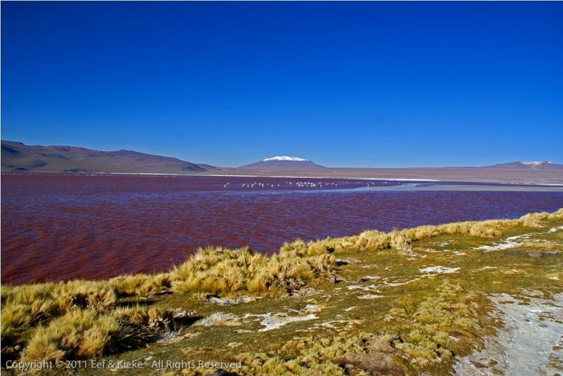 19-Laguna-Colorada