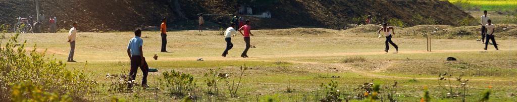 2.1 Cricket