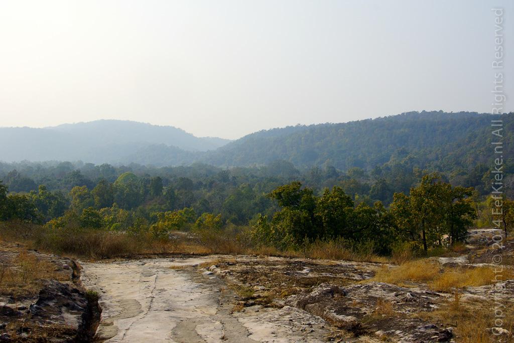 8. Landscape