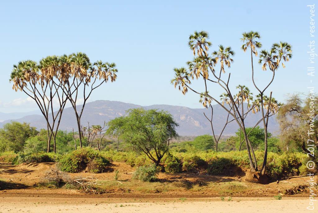 travel-soap-kenia-samburu-2017-52